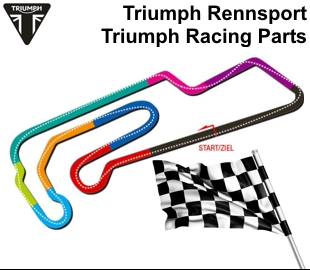 triumph racing parts daytona 675 from vin564948 - triumphworld.de