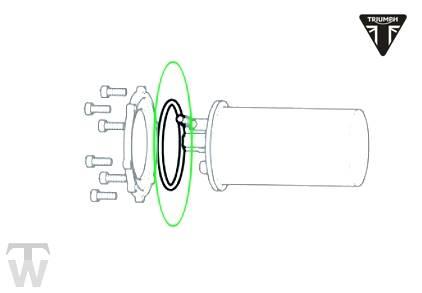 Benzinpumpendichtung rund (Details)