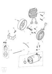 Lichtmaschine Anlasser - Speed Triple 1050 ab FIN461332