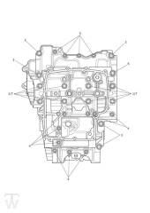Motorgehäuse Schrauben - Tiger 800 XC