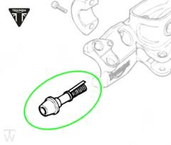 Reparatursatz Hauptbremszylinder Thruxton EFI