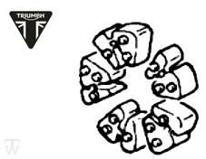 Ruckdämpfer Hinterrad Speed Triple T300 (alle Modelle)