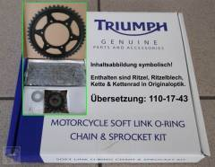 Kettensatz 530-110-17-43 Speed Triple T300 (alle Modelle)