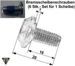 Bremsscheibenschrauben Set 12Stk. Speed Triple 955i ab FIN141872